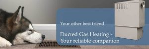 Wood & Gas Fireplaces, Ducted Heating & Space Heaters